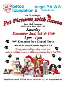 Pet Pictures with Santa @ Petco Clark Commons | Clark | New Jersey | United States