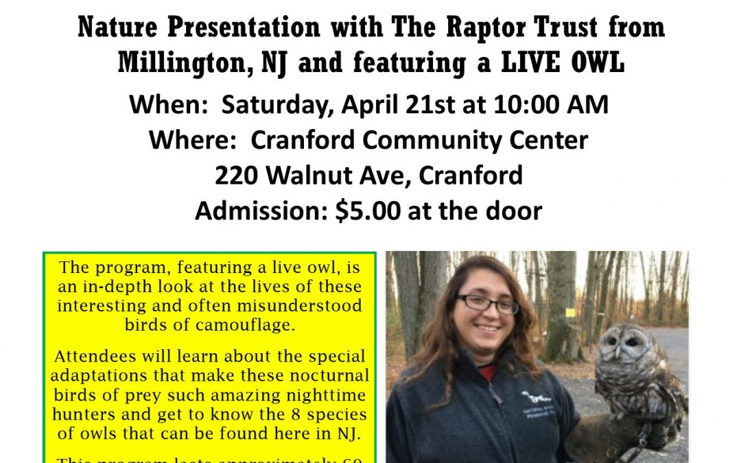 """All About Owls"""" at the Cranford Community Center"""