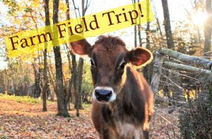 Farm Field Trip! @ Dreyer Farms | Cranford | New Jersey | United States