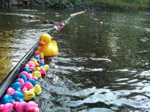 Hanson Park Conservancy's 9th Annual Duck Race @ Sperry Park | Cranford | New Jersey | United States