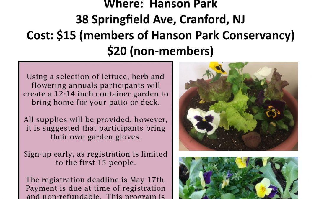 Lettuce Bowl Workshop At Hanson Park
