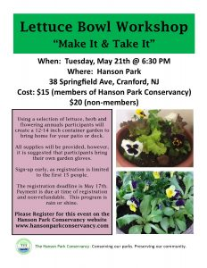 Lettuce Bowl Workshop At Hanson Park @ Hanson Park | Cranford | New Jersey | United States