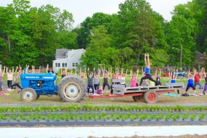 Farm Yoga Event: A Yoga Practice in the Fields at Dreyer Farms @ Dreyer Farms | Cranford | New Jersey | United States