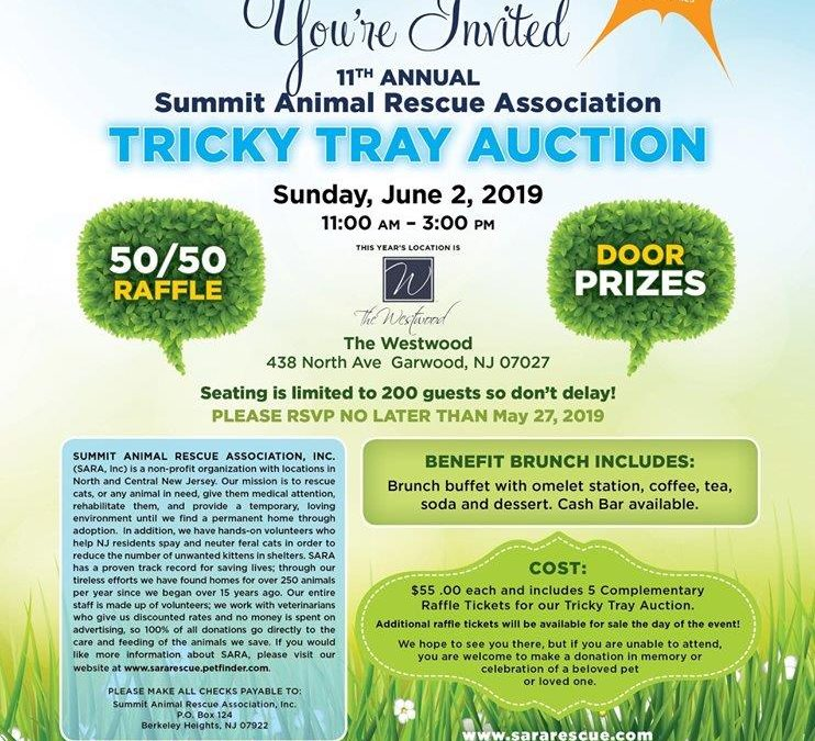 Summit Animal Rescue Association 11th Annual Tricky Tray Auction