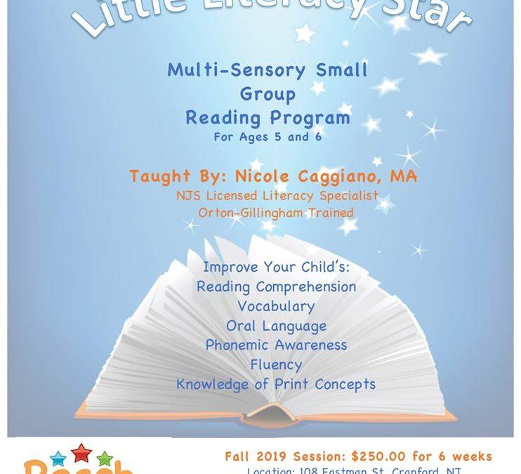 Little Literacy Program