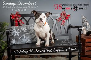 Holiday Pet Photos @ Pet Supplies Plus - Garwood NJ