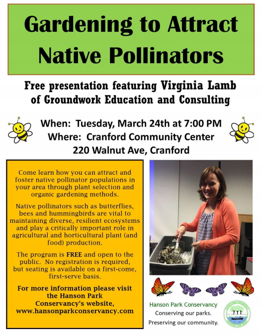 Gardening to Attract Native Pollinators
