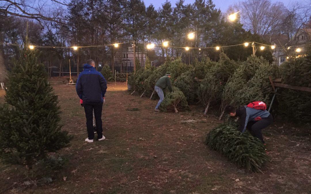 Westfield Area Y Men's Club Tree Lot Opens Saturday, November 28